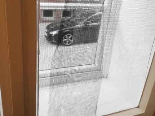 二重窓の網戸